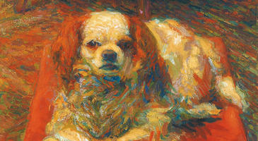 gallery_ GAMECBoccioni_La cara Betty